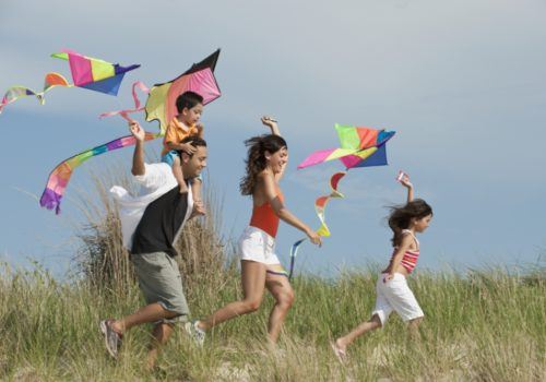 Title: Family flying kites in field Creative image #: 93908978 Licence type: Royalty-free Photographer: Ariel Skelley Collection: Blend Images Credit: Ariel Skelley
